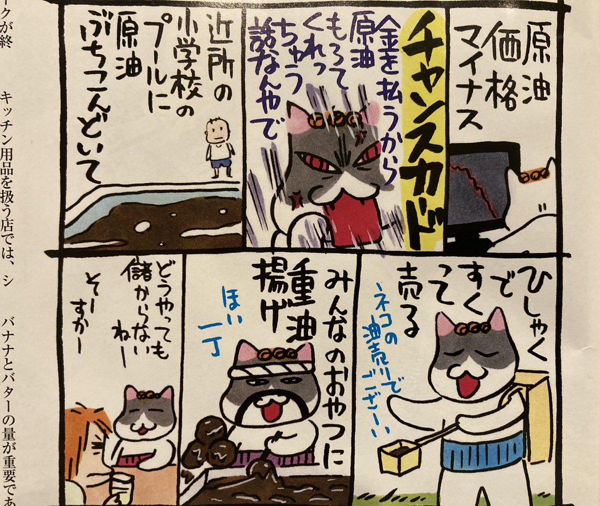 猫 組長 twitter