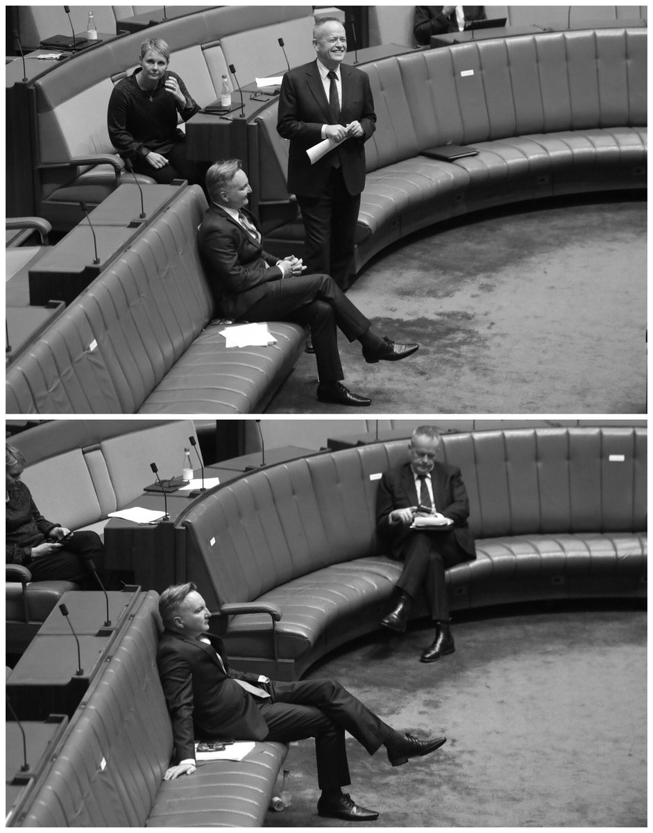 Bill Shorten and Chris Bowen-Start of #qt VS end of #qt @AmyRemeikis @GuardianAus #politicslive theguardian.com/world/live/202…