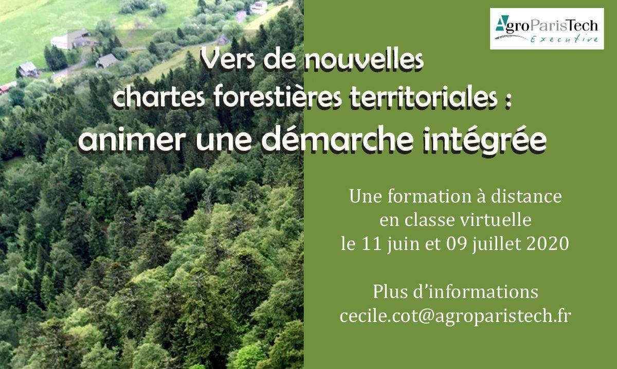 Animateur de charte forestière, chargé de mission #forêt-bois ou de projet territorial sur un #territoire forestier ! Cette #formation à distance est pour vous : https://t.co/q8LvR9GXzQ @AgroParisTech  @aptalumni https://t.co/NovVnrIaSI