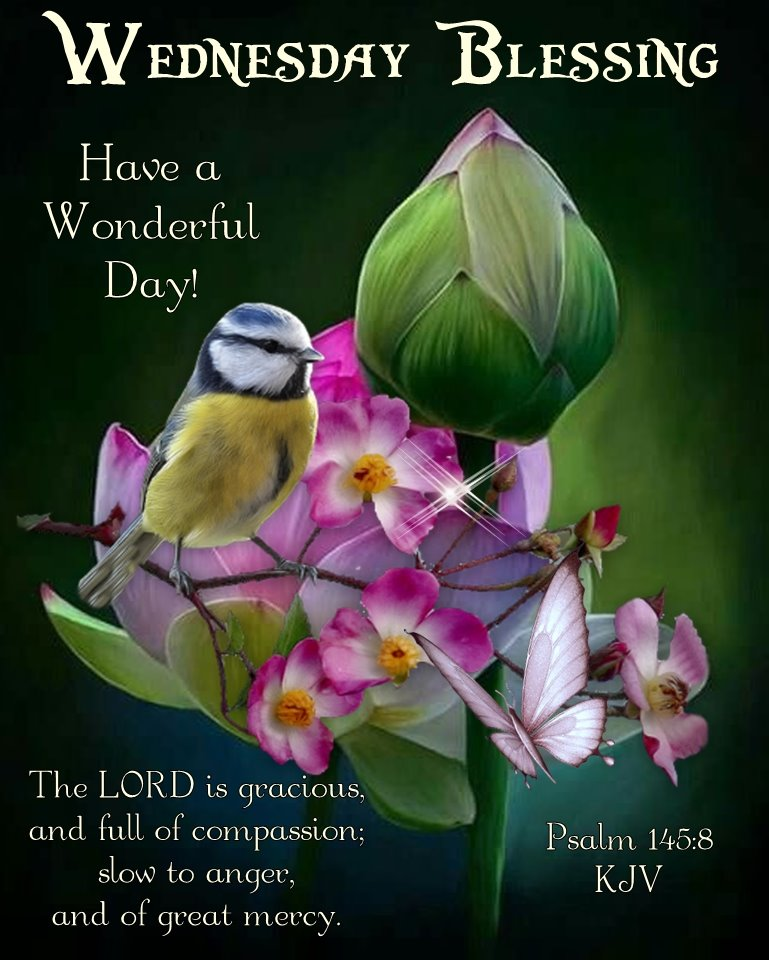 """His Cornerstone, LLC on Twitter: """"Good Morning Everyone!! Happy Wednesday,  I pray that you have a safe, happy and blessed day.… """""""