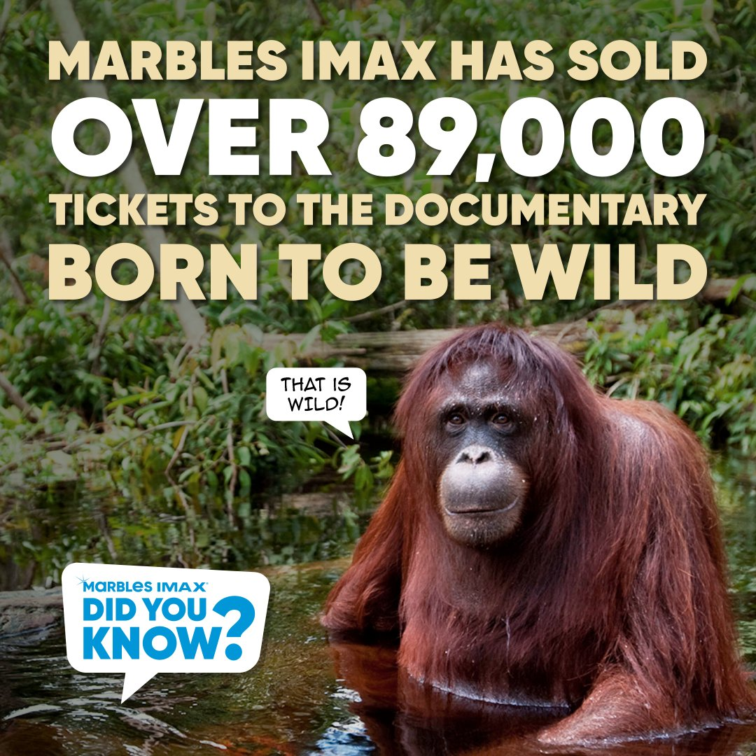 Did you know? Marbles IMAX has sold over 89,000 tickets to Born to Be Wild 3D!  Born to Be Wild 3D documents orphaned orangutans and elephants and the extraordinary people who rescue and raise them-saving endangered species one life at a time.  Have you seen Born to Be Wild 3D? https://t.co/W0w1wYFA9X