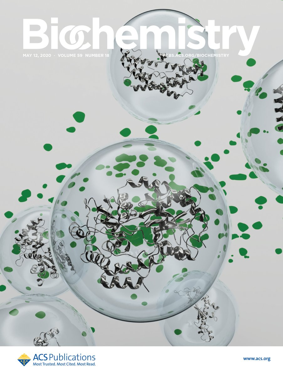 This months beautiful cover highlights a Communication by Thoma and Burmann (@goteborgsuni). The authors performed in situ #NMR on purified outer membrane vesicles to study the structure and dynamics of E. coli periplasmic and outer membrane proteins. pubs.acs.org/doi/10.1021/ac…