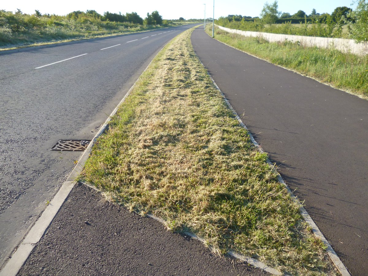Was shocked & sad to see this on early walk this morning. These verges were ablaze with buttercups, clover etc. on a straight road with no visibility problem. Absolutely mindless! # @LGSpace # @wiltscouncil