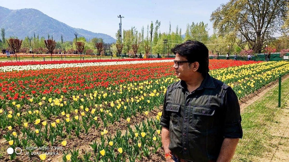 #Lockdown to #DownMemoryLane  Tulip Garden #Srinagar<br>http://pic.twitter.com/6vJhKsZ4rS