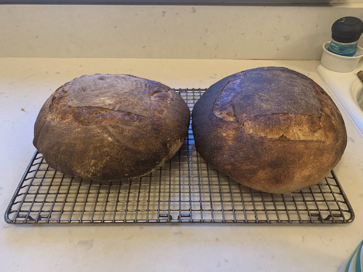 @seeshespeak We finally got back into sourdough this weekend. No wood fired oven, tho...