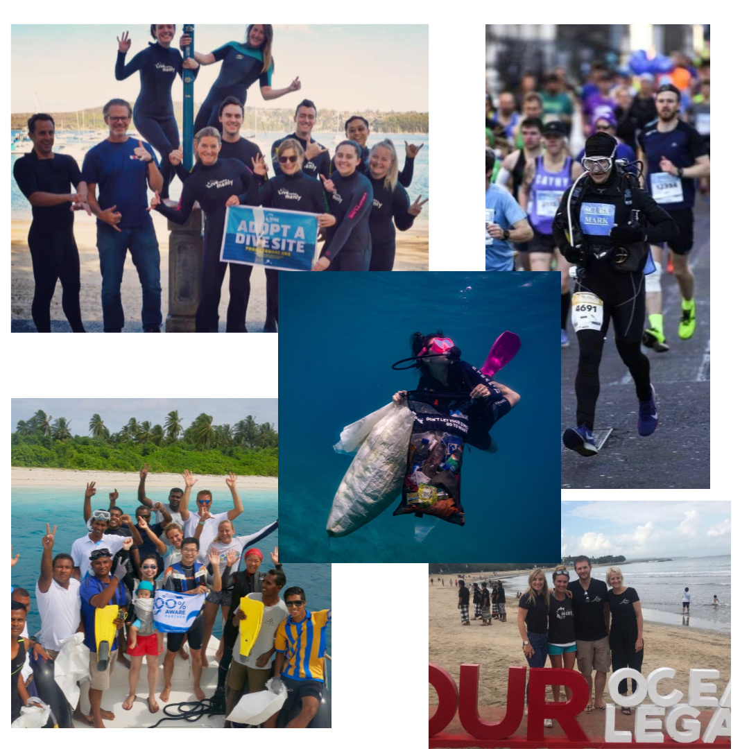 Happy #GivingTuesdayNow! TY our global community for coming together and supporting a clean and healthy ocean.  Thanks 🙏💙#100AWARE partners, #AdoptaDiveSite and #DiveAgainstDebris heroes,   donors and fundraisers, #SharkLeague and #TrashFreeAlliance partners   @givingtuesdayuk https://t.co/o54C0igE8a
