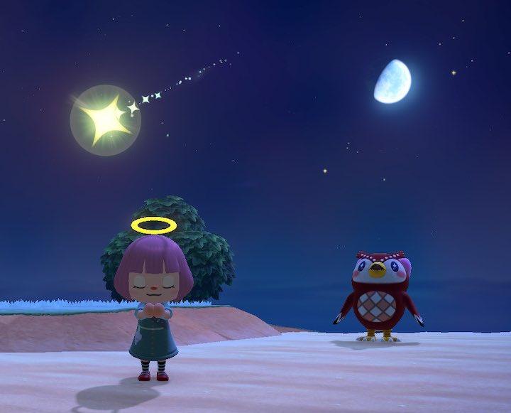 どうぶつ の 森 フーコ 流れ星