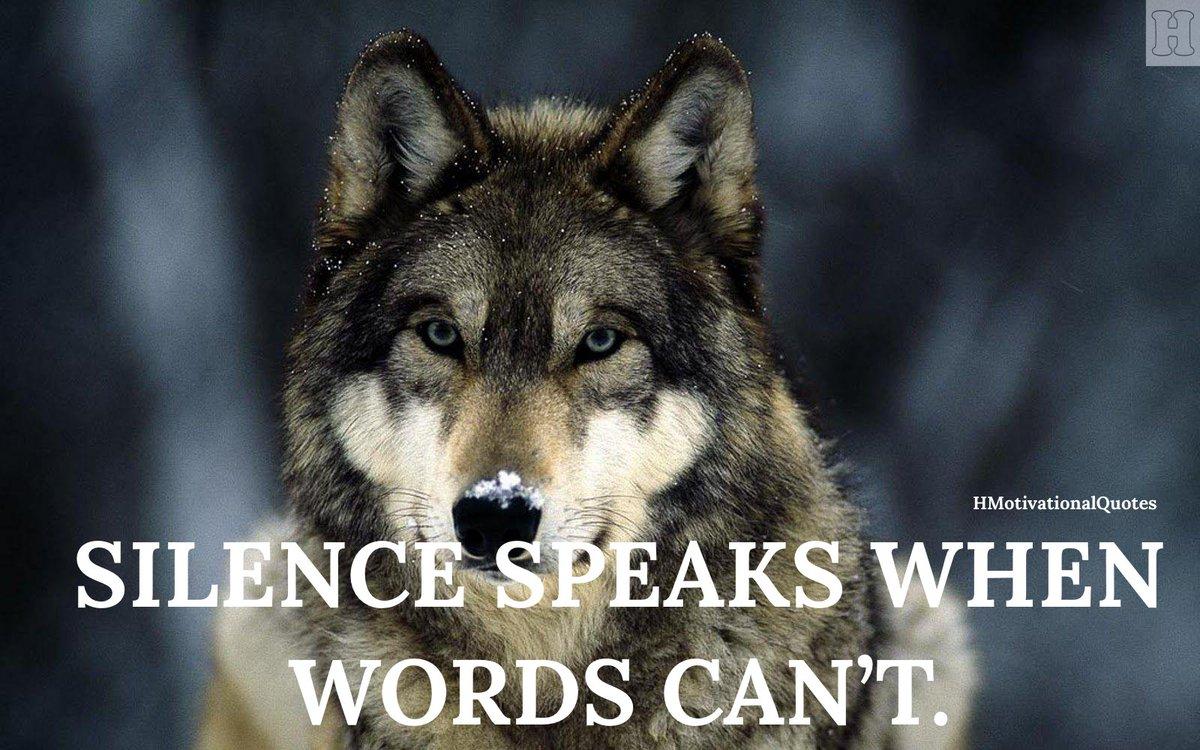"""Silence speaks when words can't"".  #successclub #successmotivation #successsecrets #successformula #successgoals #ceoquotes #successmore #motivationforlife #attitudeproblem  #HMotivationalQuotespic.twitter.com/5syCfxhP9h"