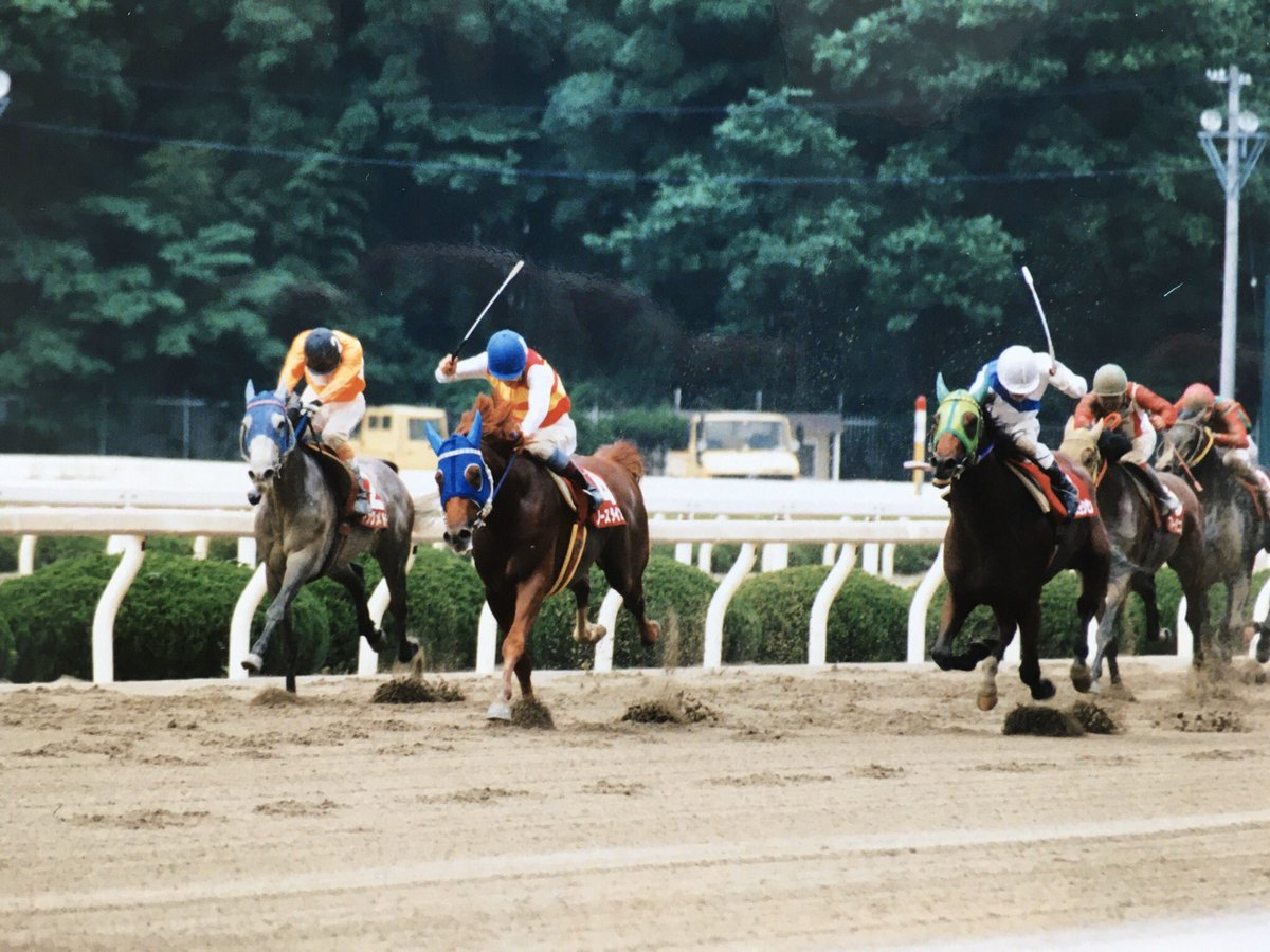 "Keiichi Fukada on Twitter: ""1998.5.6.園田、兵庫大賞典。1着ノース ..."