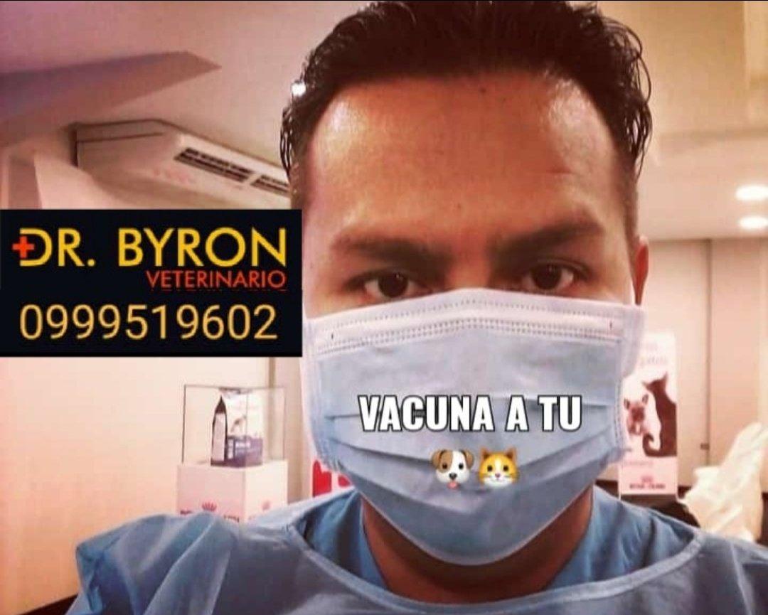 #QuedateEnCasa y si tienes una emergencia con tu mascota no dudes en llamar al #DrByron. Atención a domicilio (solo Guayaquil y sus alrededores). https://t.co/lxorwbalV7