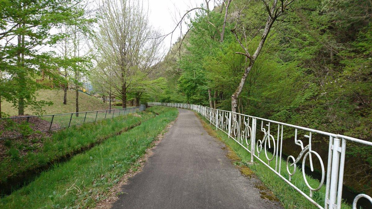 今日は市民プール沿いのサイクリングロードを散歩👣🚶 新緑が綺麗な季節になりました🌳🌿 https://t.co/lo36CF4i9N