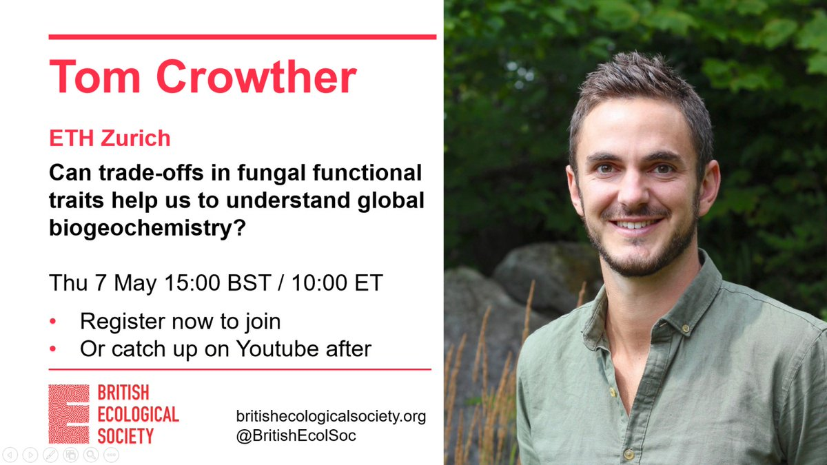 Don't miss the next in our weekly series of #EcologyLive talks. Sign up now to hear @CrowtherLab ask whether trade-offs in fungal functional traits could help us understand global biogeochemistry  https://t.co/A8g6hTxEhn https://t.co/RvhSuxqVZD