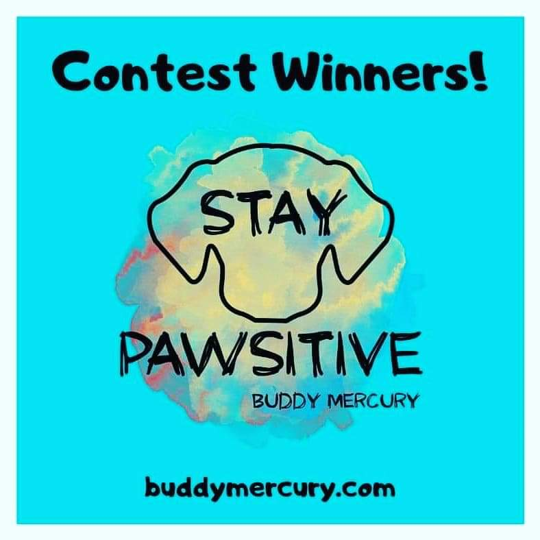 🎉CONGRATULATIONS to Lisa, Virginia, Myla, Joseph and Laura! STAY PAWSITIVE CONTEST WINNERS! An email has been sent to claim your prizes! Arooooo!!! Thank you for entering we loved reading your responses!!  #buddymercury  #GivingTuesday #GivingTuesdayNow #tuesdayvibes https://t.co/qK8x7Q0nrg