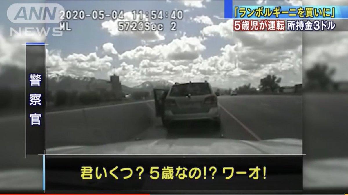 """あま君@ネタツイ on Twitter: """"5歳児が運転してランボルギーニ買いに行 ..."""