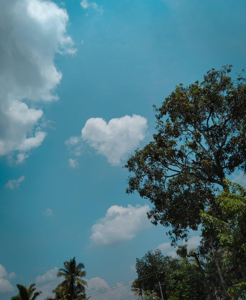 Love behind the tree  #ig_shotz #agameoftones #exclusive_shots #superhubs #global_hotshotz #worldshotz #ig_masterpiece #jaw_dropping_shotz #photographyislifee #photographysouls #main_vision #photographyislife #theworldshotz #captionplus #ig_great_pics #iglobal_photographerspic.twitter.com/v1Tv3i0Lnp