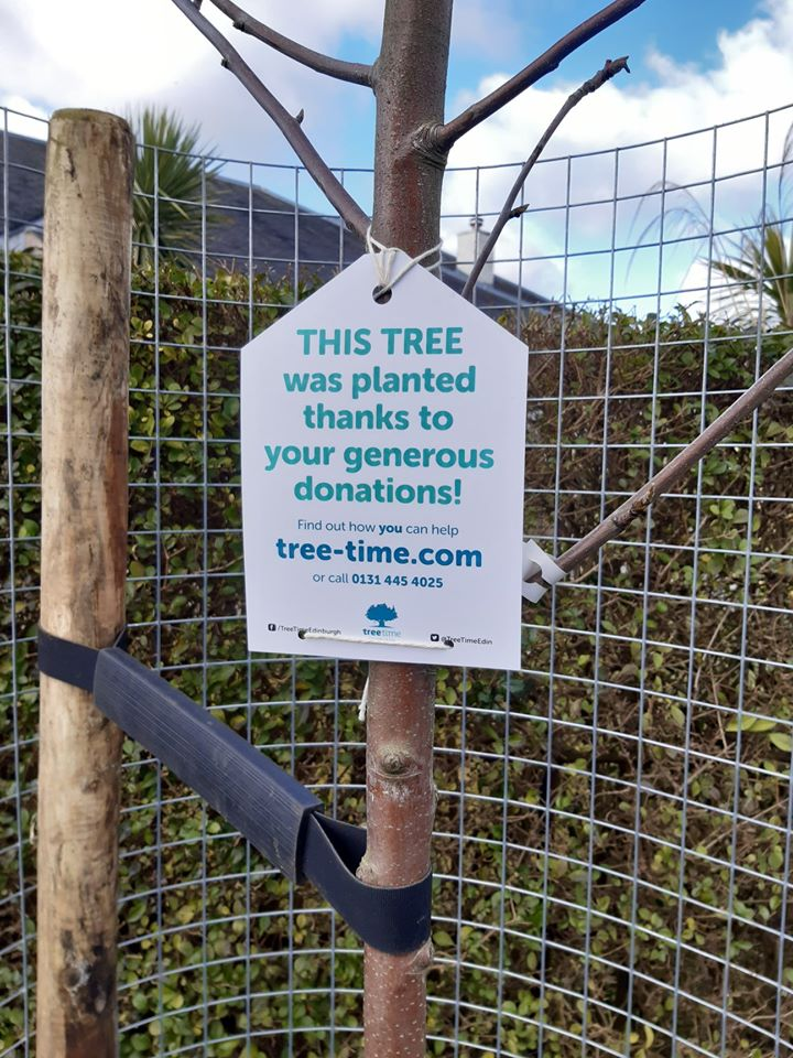 """Delighted to receive feedback from local residents about the new street trees we planted. """"We are very glad to see them as the existing trees are quite mature and our area would not be the same without them"""".@edinburgh_cc @WoodlandTrust"""