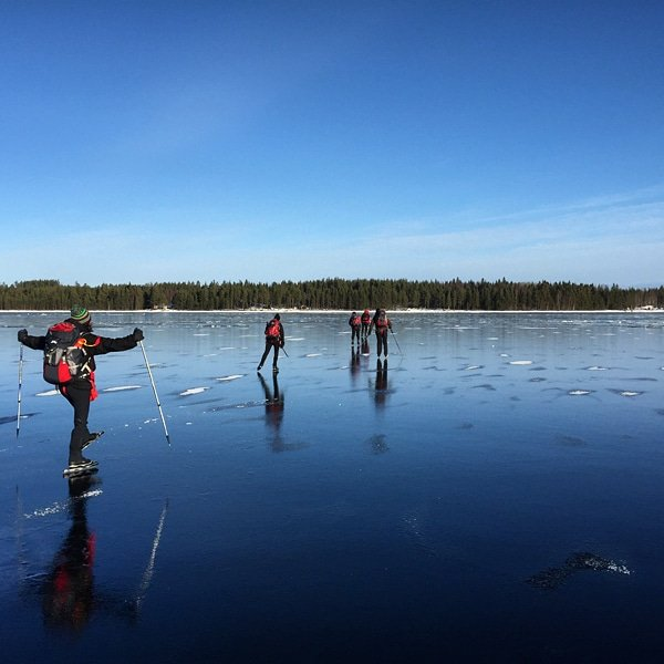 Bookings are now open for our popular Ice Skating on Natural Ice tours in Sweden for 2021! Tours run Thursday-Sunday in January and February with both Standard and Experienced level dates available. naturetravels.co.uk/winter-other-s… #naturetravels #microadventures #iceskatingonnaturalice