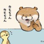 【4コマ漫画】カワウソが〔ウソ〕をついた時のテヘペロが可愛い!