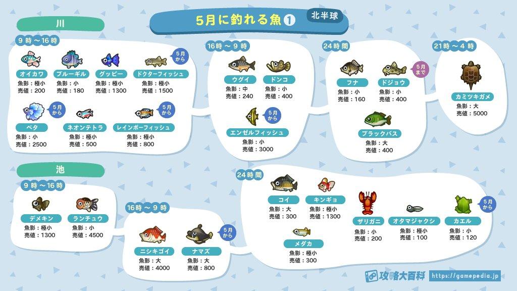 「あつ森ユーザー」必見!?5月に出現する魚 出現条件まとめ!