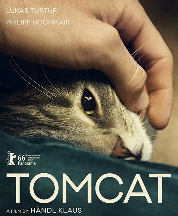 #Tomcat #LukasTurtur #PhilippHochmair Moses the cat  put a strain to this couple's relationship & Kathi the other cat  kinda fixed it back .  An unusual story definitely worth watching, expects lots of nudity #TeddyAward at #BerlinFilmFestival   #LGBTmovie pic.twitter.com/uZaZ70n973