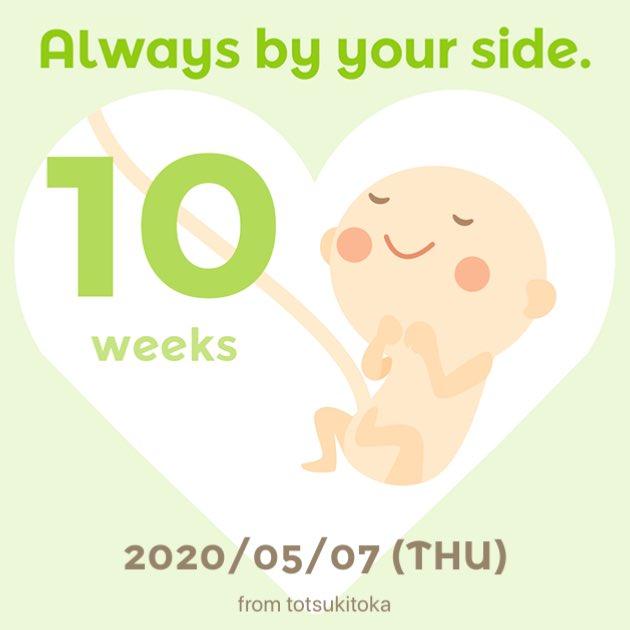 10週 つわり