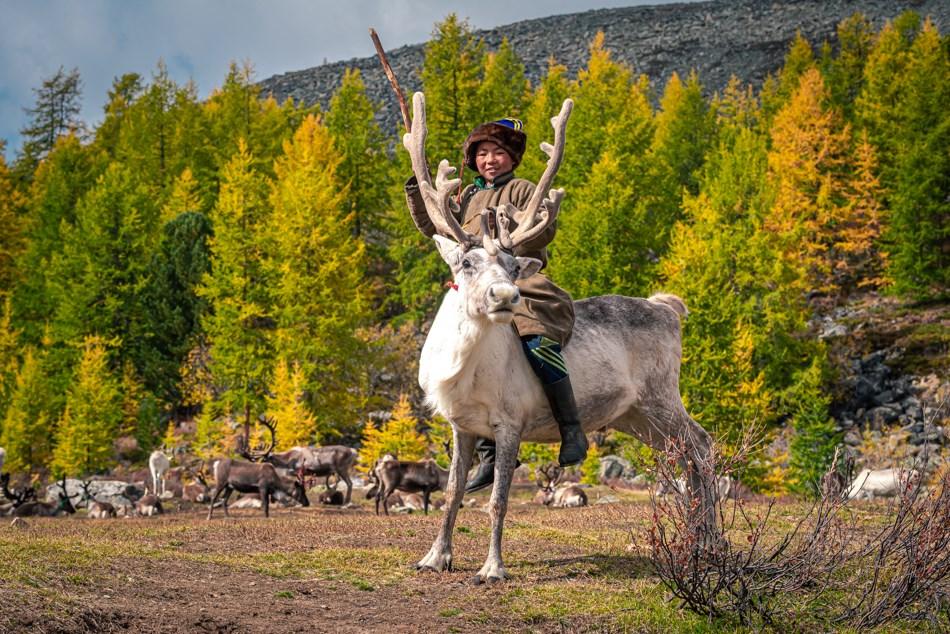 Do you know? The Most Common Names in Mongolia: 1. Bat-Erdene for boys 2. Khulan for Girls 🤔🤔🤔  Enjoy reading next blog: 7 'The Most' of Mongolia! https://t.co/kBJhGQyu8R  #DiscoverMongolia #Mongolia #visitMongolia #facts #traveltip #guide #nomad #themost https://t.co/Vg4CNlbvfm