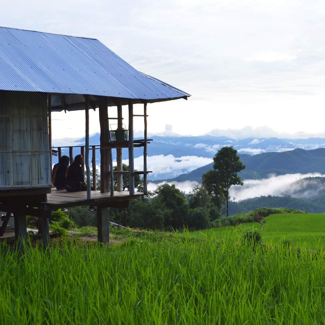 #เชียงใหม่ : สายหมอก ทิวเขา และ ผืนนา  บ้านป่าบงเปียง จ.เชียงใหม่ ~ นาขั้นบันได ช่วงเดือนสิงหาคม  #savechiangmai #saveเชียงใหม่  #เที่ยวไทยเท่ #Amazingไทยเท่ #เมืองไทยสวยทุกที่เท่ทุกสไตล์  #AmazingThailand #ReviewThailand  @Review_Thailand @go2Thailandpic.twitter.com/tzFiVrWovb