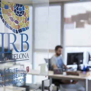 At the @bbglab at @IRBBarcelona, they have vacancy  for a Postdoctoral fellow in #bioinformatics. 🖥️🧬 Take a look at the group's site: https://t.co/W29Ny22tIn And apply by 10 June ➡️ https://t.co/JHiu9dEpQW Other job openings ➡️ https://t.co/O1pY1nM9IT https://t.co/w8ccKSndlq