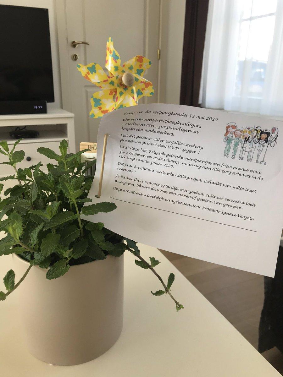 Cadeautje dag vd verpleegkundige van diensthoofd gynaecologie 😍 #dagvandeverpleging #uzleuven #verpleegkundige @UZLeuven https://t.co/SCj8qS7YeT