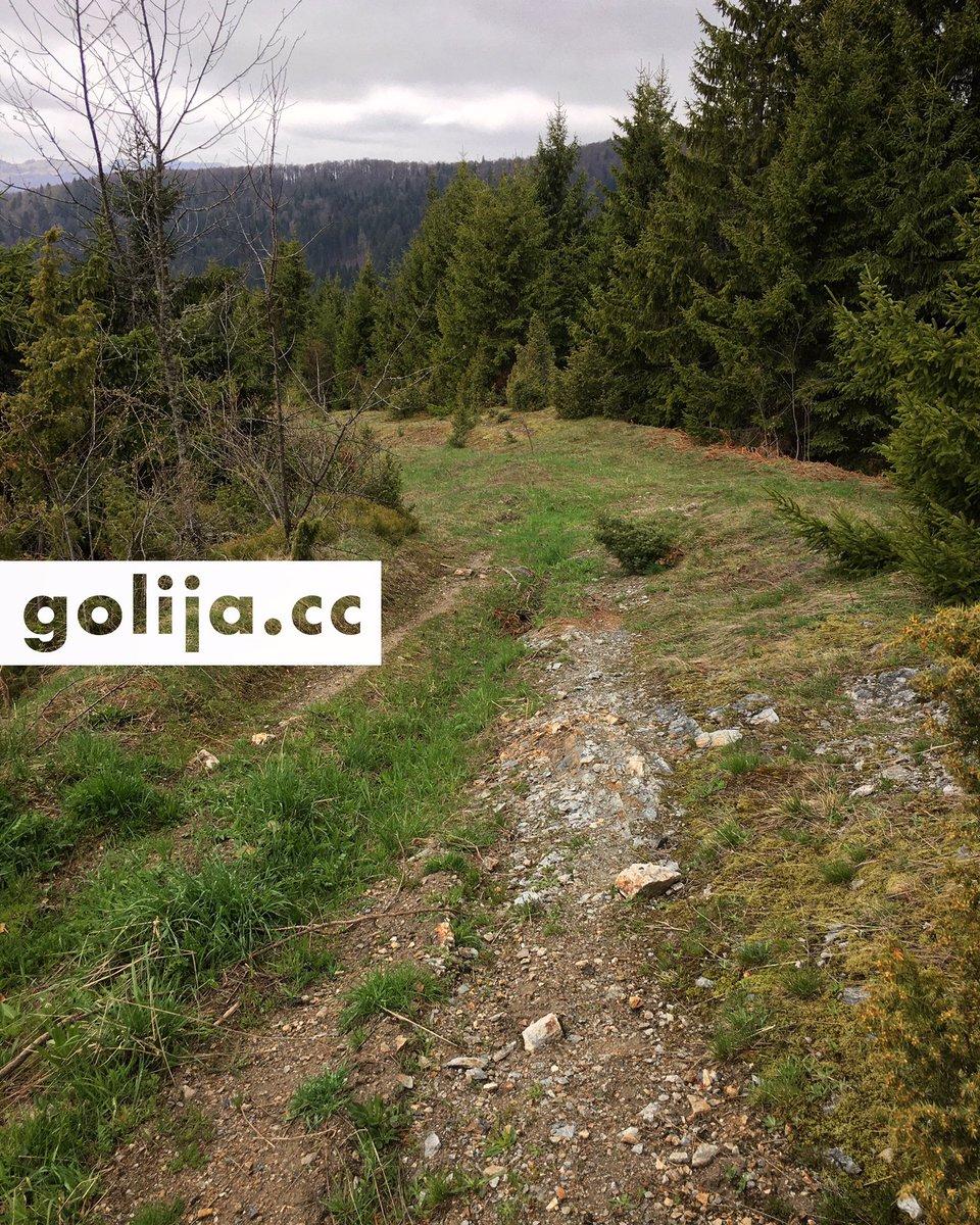 Anyone fancy a ride? 🚵🏻♀️🚵🏼💨 #GolijaBike #Golija https://t.co/rZwx6RgXkq