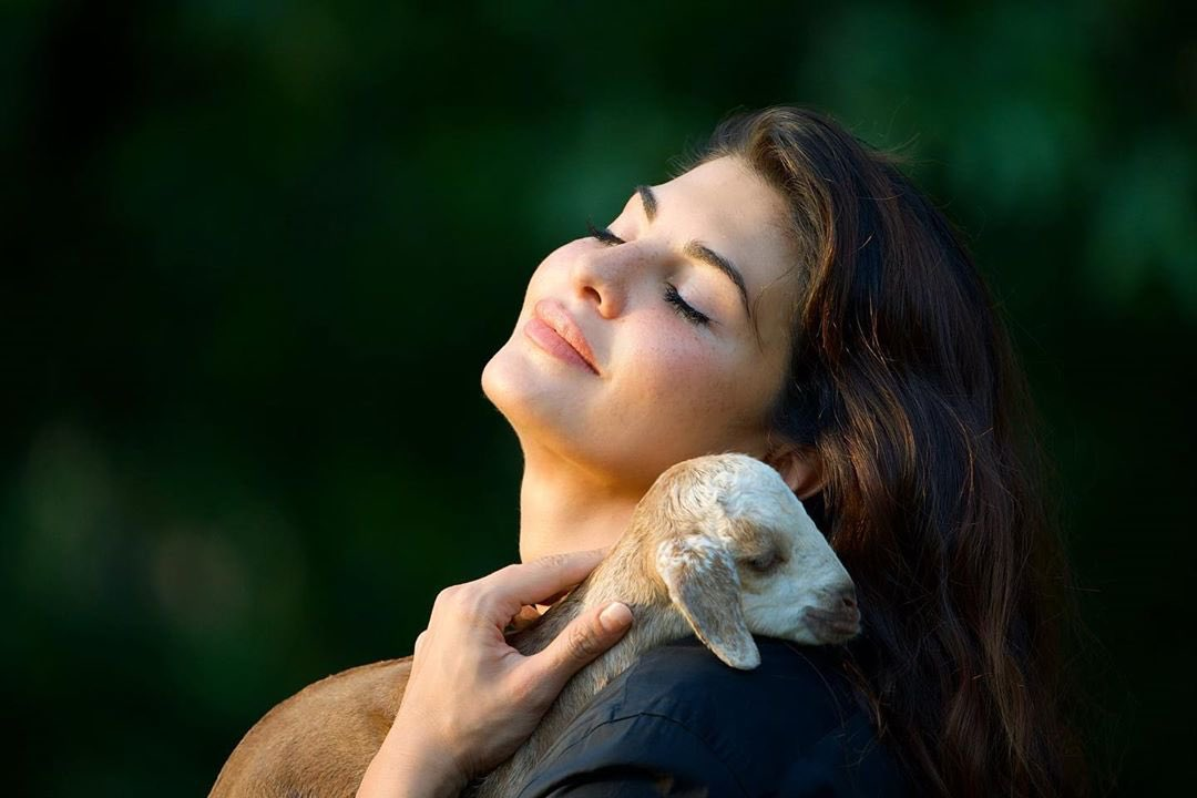 Replying to @IIFA: Jacqueline is a true animal lover ♥️🐐  #IIFA #Bollywood