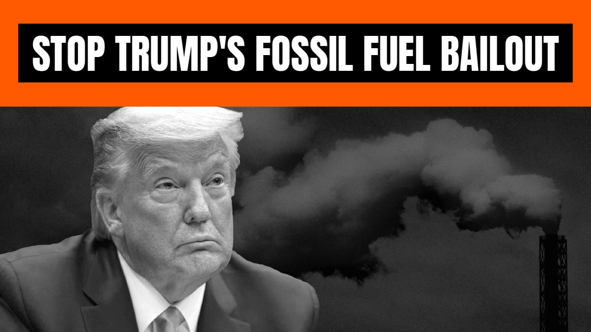 🧵KUDOS to @RepBarragan @SenJeffMerkley @IlhanMN @BernieSanders @RepHuffman @RepJayapal @EdMarkey @RepAOC for introducing the #ReWINDAct which would stop Trump & Wall Street from bailing out fossil fuels companies! stopthemoneypipeline.com/the-rewind-act… The bill would: