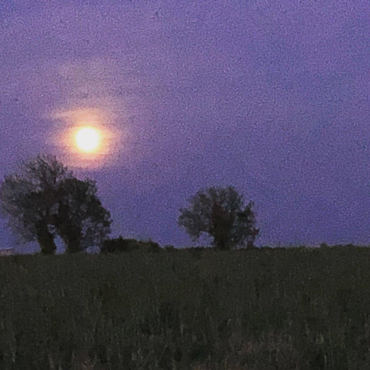 I hope you're all enjoying that beautiful #moon this evening...   #flowermoon  #fullmoon🌕 #ig_moonshots #moon #moonlight #moon_of_the_day #moonphotography
