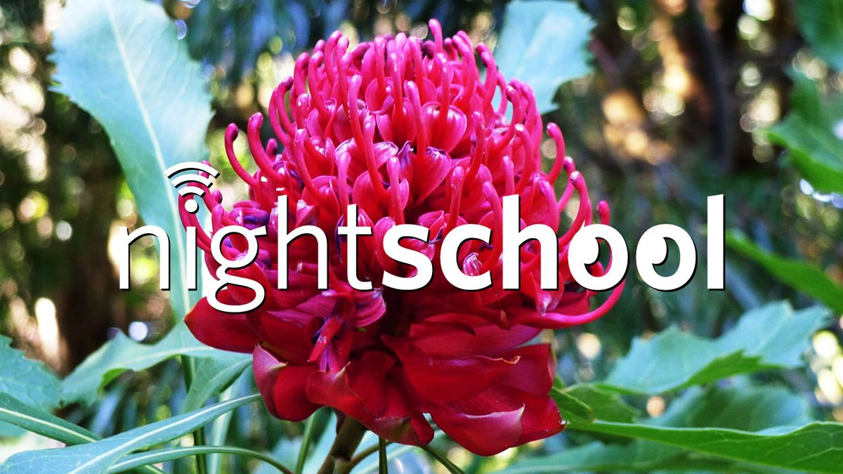 Tonight: NightSchool is in session. 🌼 During this class, well cover topics like: - water lilies & their pollinators - flower reproductive structures - plants are amazing Watch on YouTube/Facebook at 7 pm PDT: bit.ly/3diFvbK