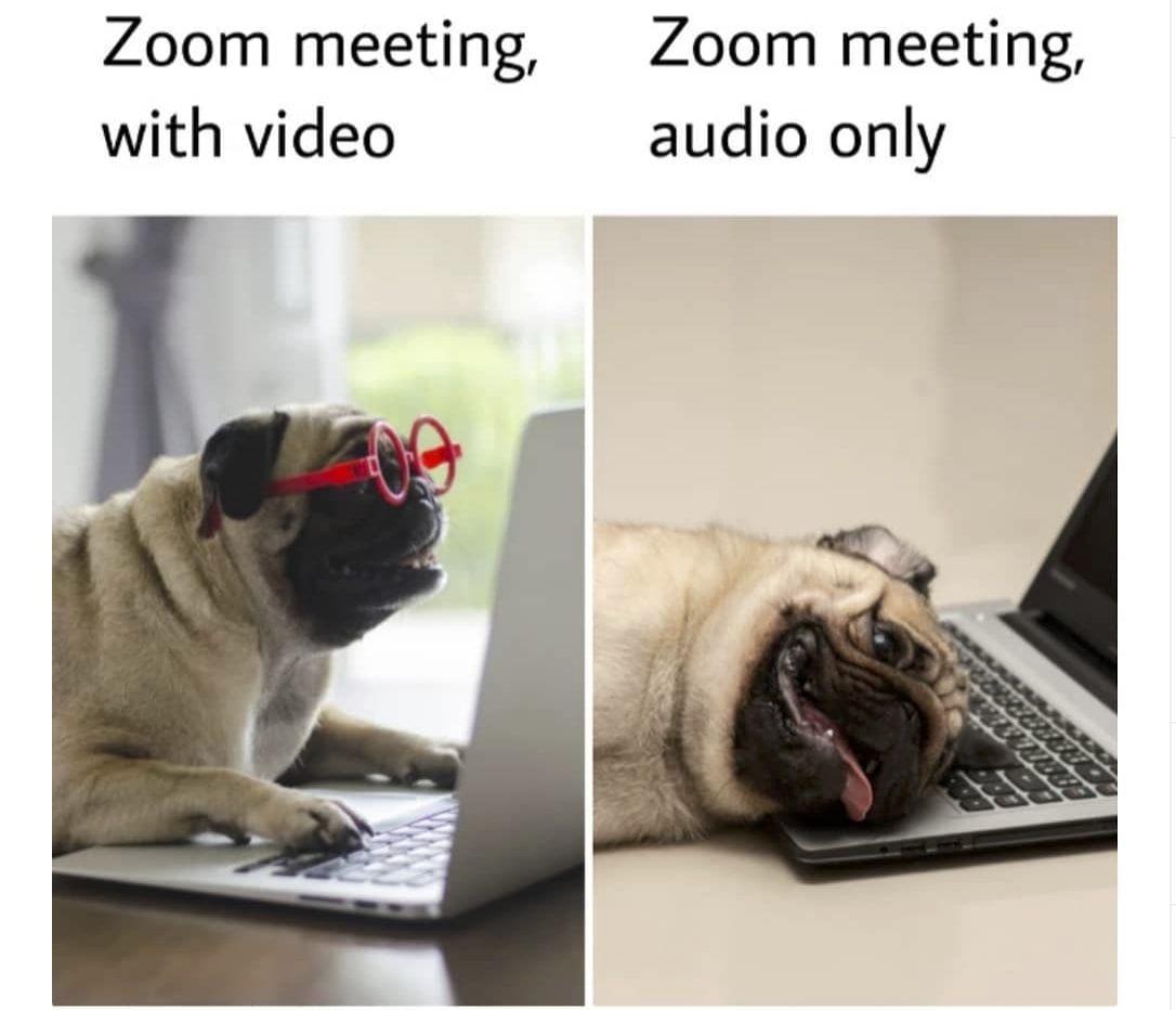 "ShaadiAtWork on Twitter: ""Updated version - Zoom meeting Audio ..."