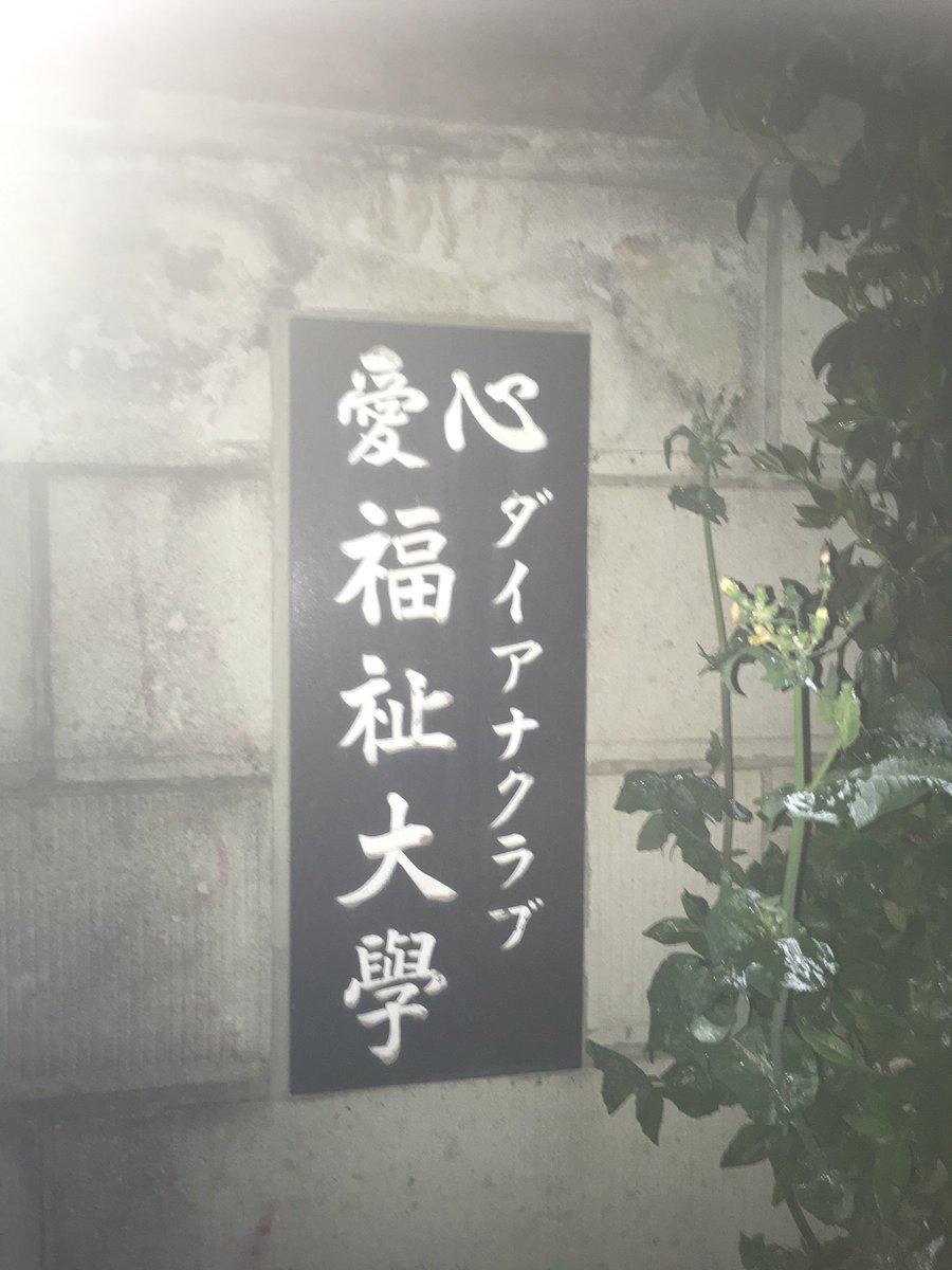 所 研究 ゾゾゾ ダイアナ