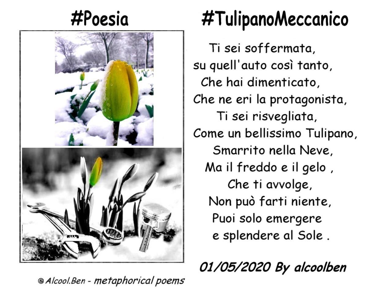 #Poesia #TulipanoMeccanico #PoesiaeVita #poesiamo #poesiaeterna #haiku #versineltempo #nuoverime #universovesi #poesiabreve #poetry #poeti #poesie #poetrycorner #poetrycommunity #poet #poem #VentagliDiParole #parolediseta #stilledipoesia #poesiaperlasera #POES #internopoesia #pos https://t.co/PGc7B1TVP8