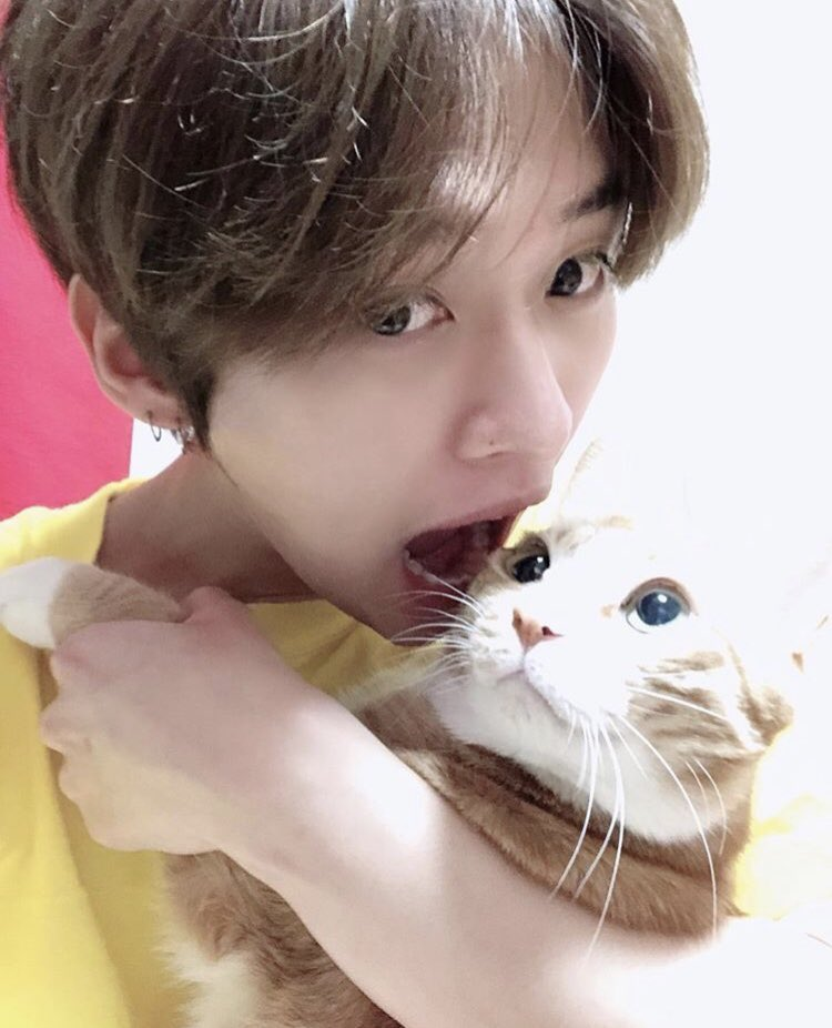 cat lovers in the building  [#StaySelcaDay • @Stray_Kids]<br>http://pic.twitter.com/v4eNwlUBlf