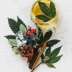 Image for the Tweet beginning: #cannabis #weed #marijuana Don't allow