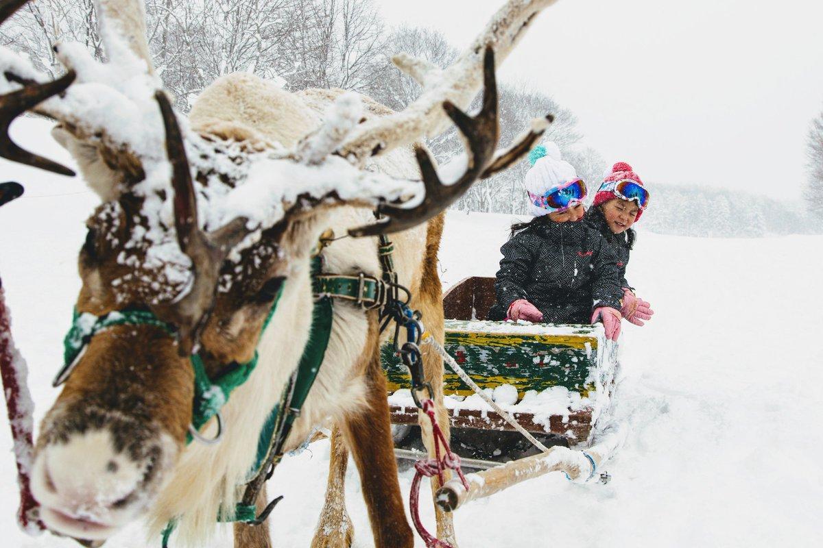 パウダースノーの世界へ、笑顔いっぱいの家族旅行を夢見て  Dream travelling with your family to a powder paradise... A magical winter awaits.  #ヒルトンと共に夢を#ヒルトンニセコビレッジ #dreamwithus https://t.co/mDdIsBpXkh