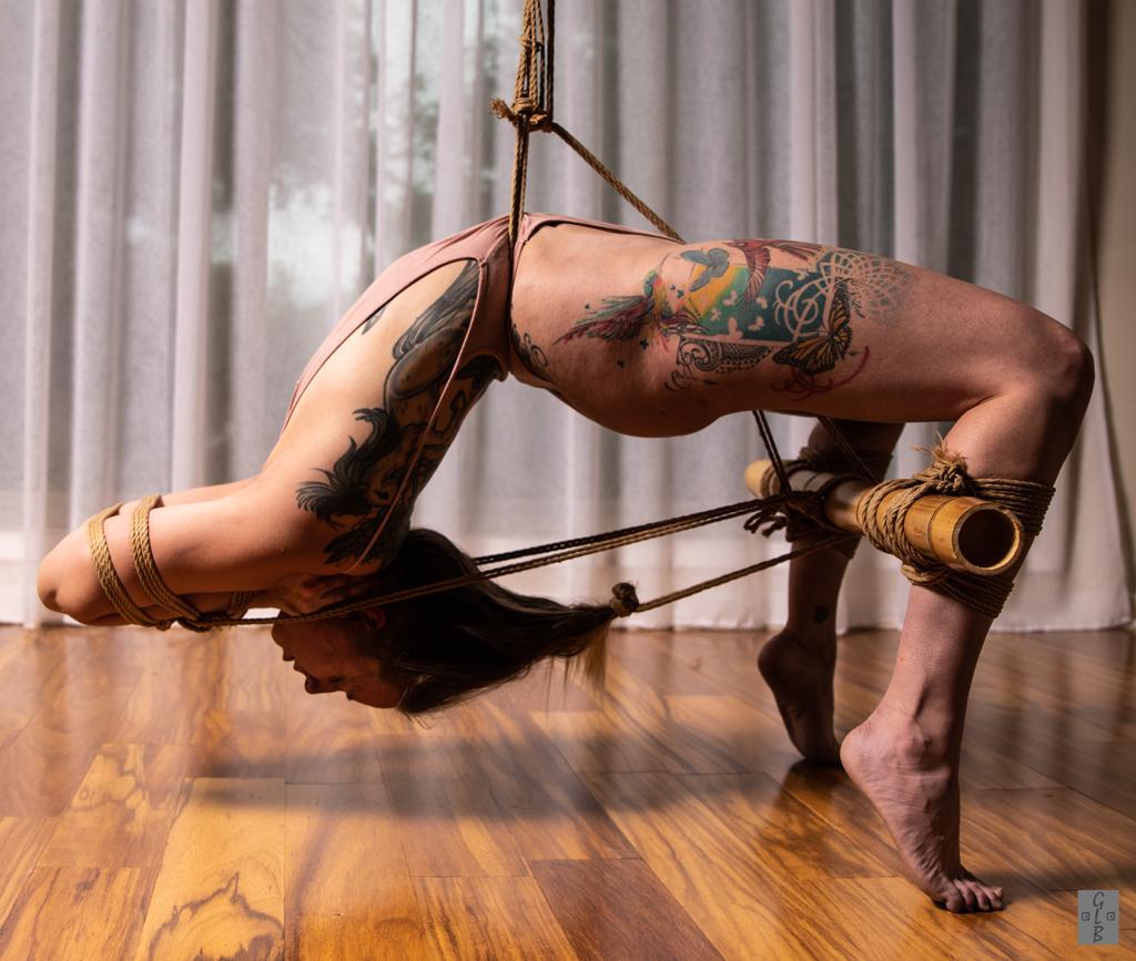 Female contortionist bondage