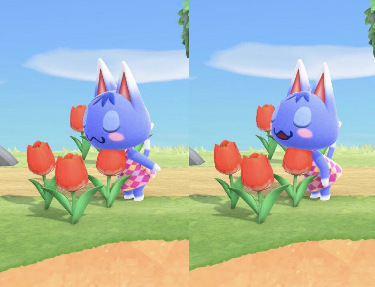 Also here is a compilation of some of my favorite Rosie moments I caught in the game so far! #ACNH