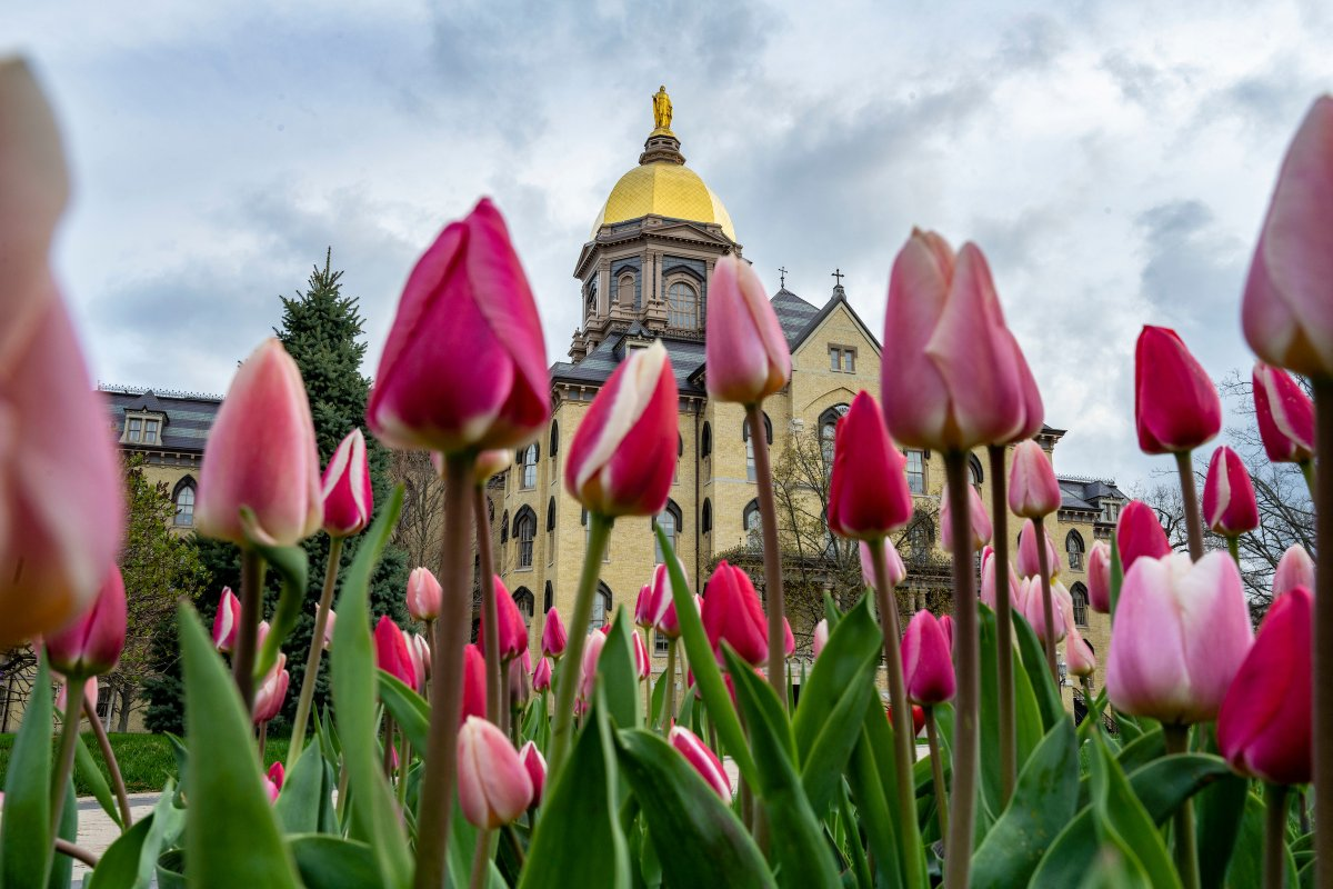 Tender, strong and true. Happy Mother's Day to all the Moms in the Notre Dame family!