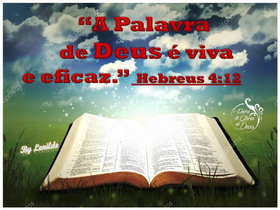 """The word of God is quick, and powerful,"" Hebrews 4:12 #ForTheGloryOfGod #ParaAGlóriaDeDeus #ReadTheBible #Bible #God  #Jesus #JesusChrist #HolySpirit  #OnlyJesusSaves  #JesusIsComingSoon  #LeiaABíblia  #Biblia  #Deus #JesusCristo #EspiritoSanto  #SóJesusSalva #JesusEstáVoltandopic.twitter.com/bONUTHV9cH"
