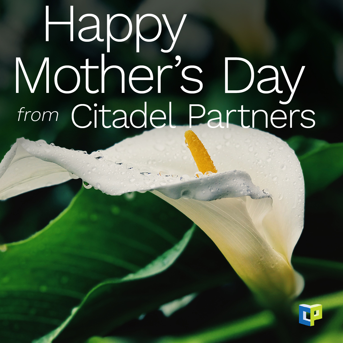test Twitter Media - Happy Mother's Day from Citadel Partners!  #CitadelPartners https://t.co/eImZDHjQ5t