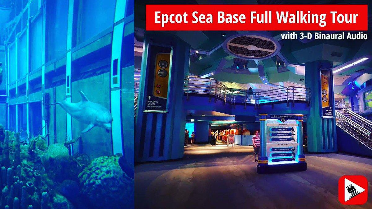 🐡🐬New video!🐬🐠  Full walking tour of the Sea Base aquarium at Epcot. 👇🏻👇🏻👇🏻 ➡️   #epcot #seabase #aquarium #epcotcenter #futureworld #wdw #waltdisneyworld #mouserulesapply #disneyparks #disneyworld #disney #walkingtour
