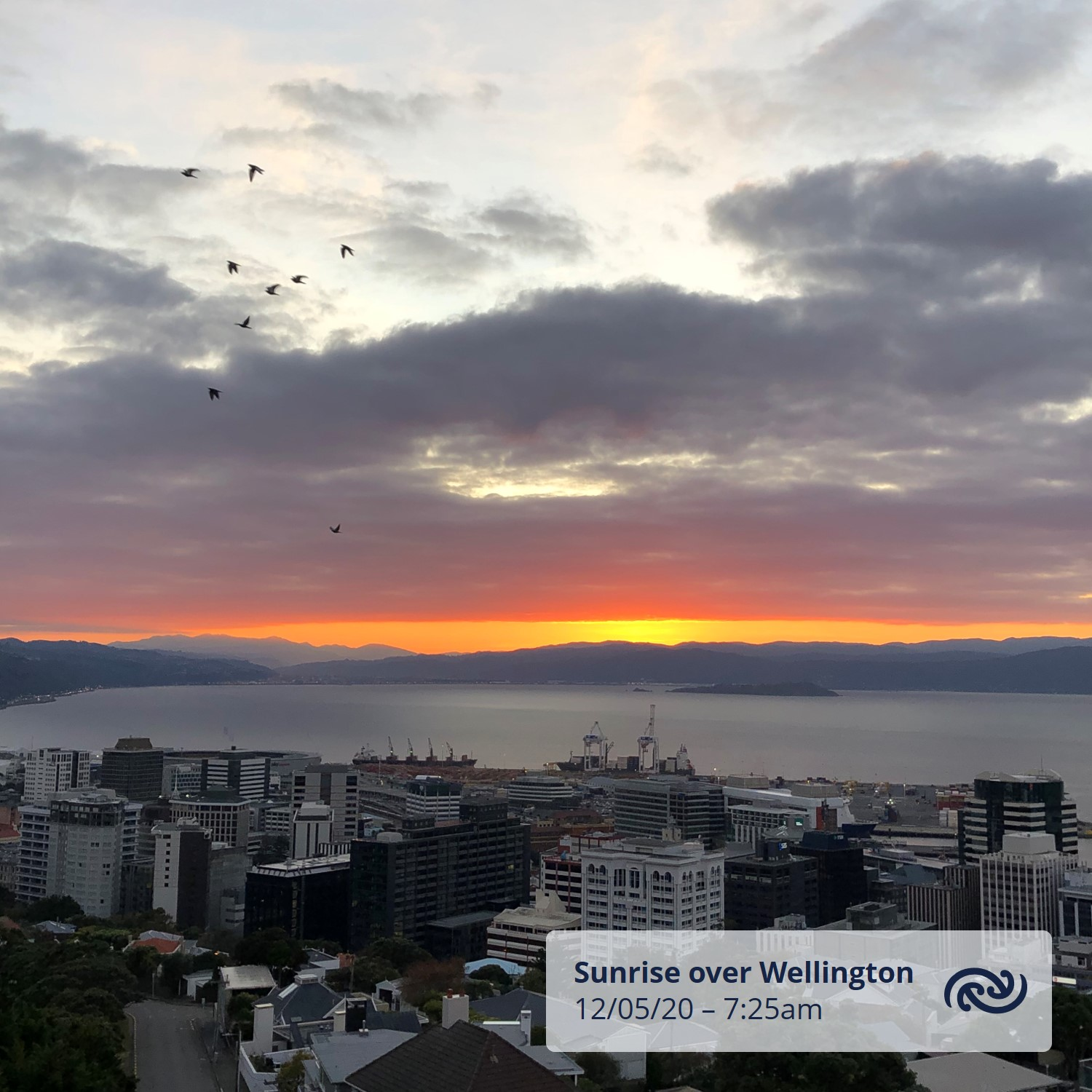 A beaut sunrise over Wellington this morning. Despite the saying 'Red in the morning sailors warning' the capital is forecast a fine day with a top temp of 16C. There is some truth to the old weather saying but it's certainly not as reliable as checking metservice.com^AC