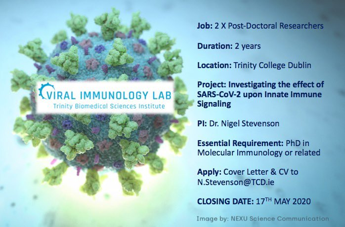 Looking for an exciting opportunity? 2 Research Fellow Positions ⁦@IImmunology_TCD⁩ ⁦@tcddublin⁩ ⁦@tcdTBSI⁩ #SARSCoV2 #ViralImmunologyTCD #InnateImmunity #ViralImmuneEvasion https://t.co/99uyBCPlvW