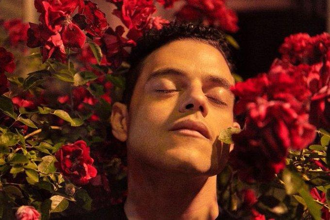 Happy birthday Rami Malek
