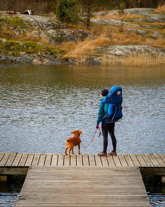 Look at his ears  • • • • • #dogsofinstagram #hikingdogsofinstagram #hikingdogsofinsta #hikingwithdogs #explorewithdogs #dogsthathike #dogsonadventures #thegreatoutdogs #backcountrypaws #mountainlife #adventurewithdogs #adventuredogsofficial #adventurepups #hikingdog #h…pic.twitter.com/GpTRObukBu
